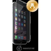 Protège-écran en verre trempé Force Glass fumé pour iPhone 6/6S