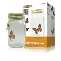 basicXL bocal à papillon
