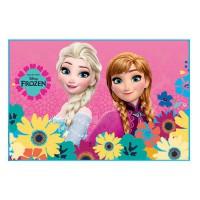 DISNEY - Disney Frozen doormat TAPIS
