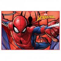 MARVEL - Marvel Spiderman doormat paillasson / tapis