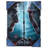 SD TOYS - Harry Potter vs Voldemort affiche en verre