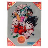 SD TOYS - Affiche en verre de personnages de Dragon Ball