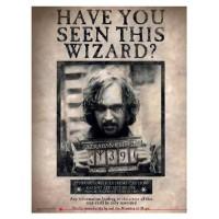 SD TOYS - Harry Potter Avez-vous vu ce magicien? Affiche en verre
