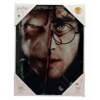 SD TOYS - Harry Potter et Voldemort affiche en verre