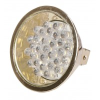 AMPOULE 30 LED 12W GOLD