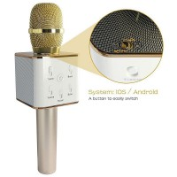 Alpexe Microphone sans fil haut-parleur karaoké Bluetooth doré