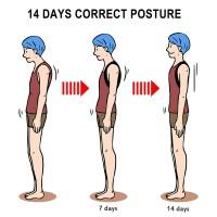 Alpexe Correcteur de Posture Dos Épaules, Lavable et Ajustable Posture pour Soulager Les Douleurs Dorsales Taille L (Buste : 96-