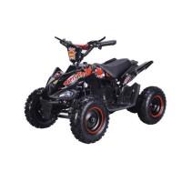 BIKEROAD Quad Electrique Raptor 800W Noir avec LED - Quad enfant