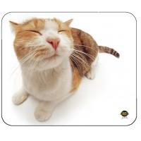 TAPIS DE SOURIS PET ME CAT X6 ALLSOP