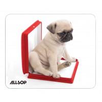 ALLSOP BTE 6 TAPIS DOG IN BOX/06411