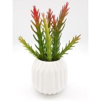 Cactus artificiel dans son contenant Scandinave - H 17 cm - Blanc