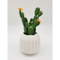 Cactus fleuri dans son contenant Scandinave - H 16 cm - Blanc