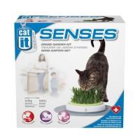 CAT IT Jardin d'herbe a chat