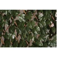 CATRAL Treillis extensible décoratif - 1 x 2m