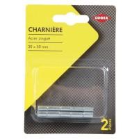 COGEX Charniere métal - 30x50 mm - 2 pcs
