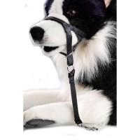 D&D Licol XS - 30-37x4x22cm - Noir - Pour chien