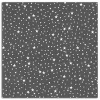 Dailylike Coupon lin 138x90cm - Voie lactée noire