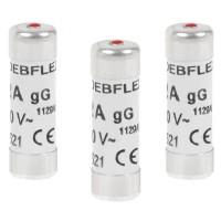 DEBFLEX Lot de 3 Fusibles 10,3x31,5 20 A