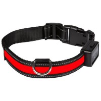 EYENIMAL Collier lumineux Light Collar USB rechargeable L - Rouge - Pour chien