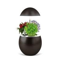 Jardin d'intérieur Vilma avec Kit de démarrage et puce NFC - Couleur Charbon
