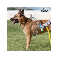MY PET Anneau de douche Wash A'Hoop - Pour chiens