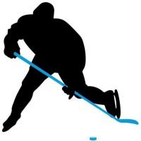 NIJDAM Crosse de hockey sur glace 137 cm - Droit - Bleu