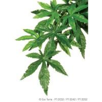 Plante Abutilon 20x55cm - Exo Terra