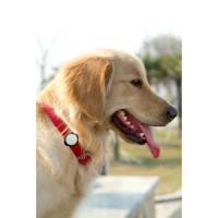 TECHNAXX Fittypet TX-46 Tracker d'activité connecté - Pour chien