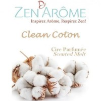 ZEN'AROME Cire Parfumée Clean Coton - Parfum d'Ambiance - Pour Brûle Parfum - CIRECC - Blanche