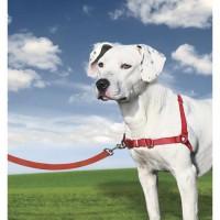 EASY WALK Harnais M - Rouge - Pour chien