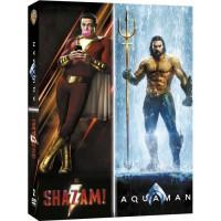 Coffret DVD Nouveaux Héros : Aquaman / Shazam !