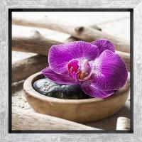 ORCHIDEE Tableau déco encadré 21x21 cm rose