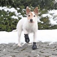TRIXIE Bottes de protection Walker Active 2 pieces XS - S - Noir - Pour chien