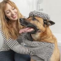 INNOVAGOODS Serviette ultra absorbante - 80 x 35 cm - Gris - Pour chien