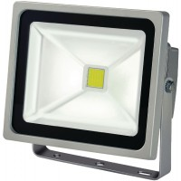 Projecteur LED COB 30W IP65