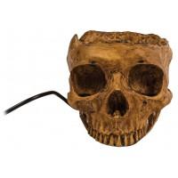 Centre USB crâne