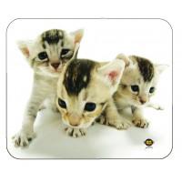 Tapis de souris en forme d'animal domestique