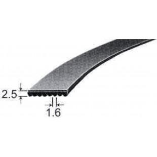 Poly v - ceinture élastique 1860PH8