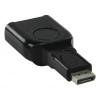 DisplayPort mâle- DVI femelle adaptateur