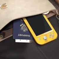 Pack de 3 Verre Trempé pour Nintendo Switch Lite, Film Protection en Verre trempé écran Protecteur vitre - Anti Rayures - Ultra
