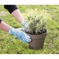 GREENGERS Gant de jardinage - T8