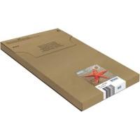 EPSON - Multipack 4 couleurs Etoile de Mer 603 - Easymail